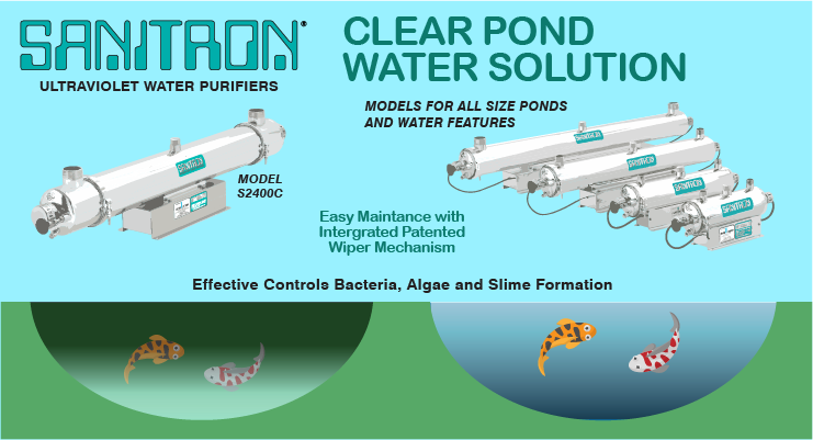Ultraviolet Disinfection Is The Clear Pond Water Solution
