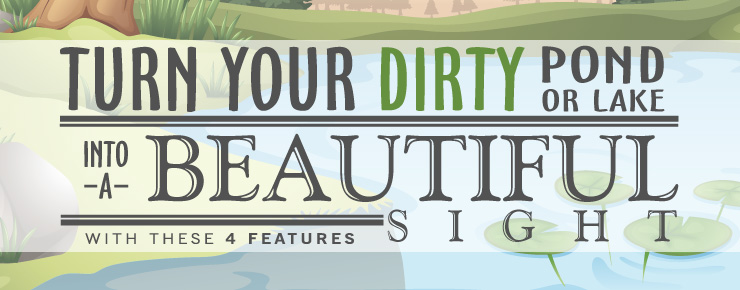 Turn your dirty pond into a beautiful sight with these 4 features