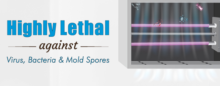 Highly Lethal against Virus, Bacteria & Mold Spores