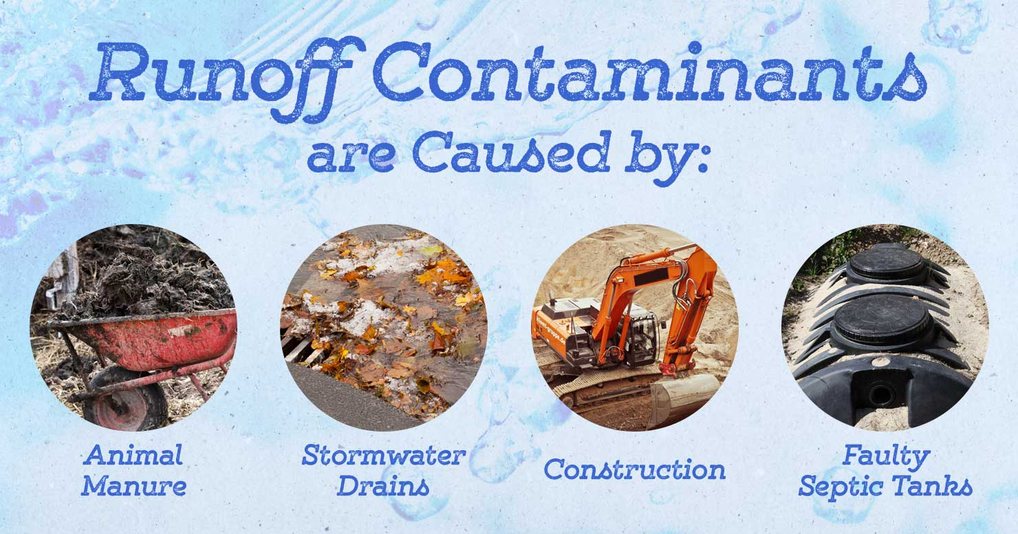 Runoff Contaminants are Caused by Animal Manure, Stormwater Drains, Construction, and Faulty Septic Tanks