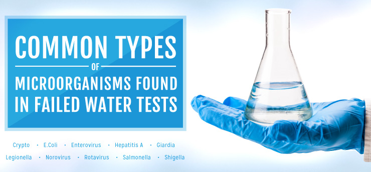 Common Types of Microorganisms Found in Failed Water Tests